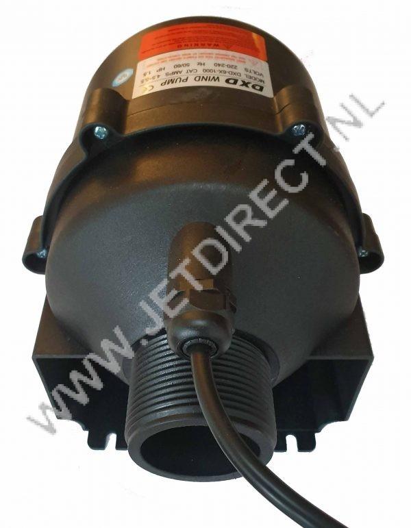 dxd-6-X-wind-pump