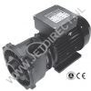 waterway-executive-euro-pump